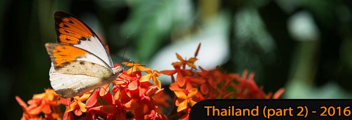 59. Thaïlande (Partie 2)