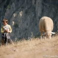 Young shepherd in the mountains
