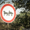 Beware of the horsecarts