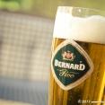 Drinking a Bernard Pivo ;-)