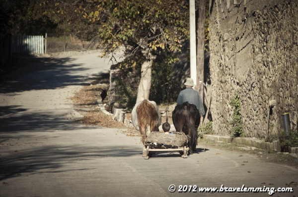 Traditional Svaneti cart, They use it in summer and winter