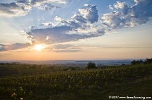 Sunrise in the field near Villany