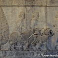 Carvings in Persepolis