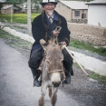Kyrgyz old man on a donkey