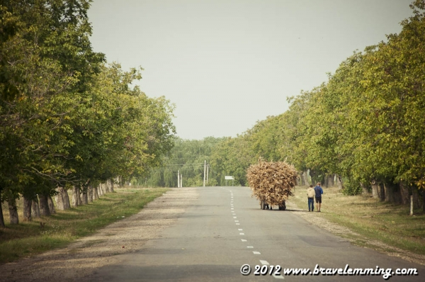 On the road in Moldova