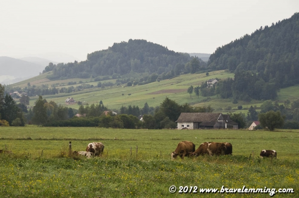 Morning in Southern Poland