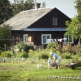 Grandma and grandson gardening