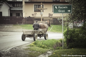 Horse cart in a village