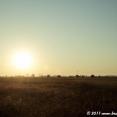 Sunrise in Southern Romania