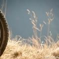 Bike poetry...