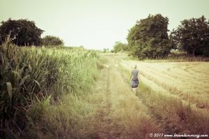 Walking in the fields...