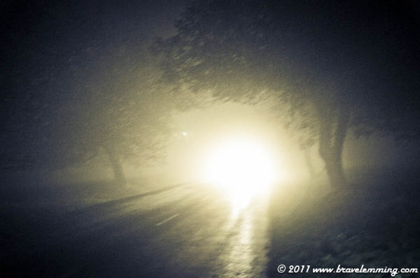 Strange atmosphere on a foggy road at night