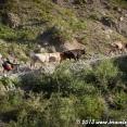 Blog_2013-06-21_Tajikistan_193020