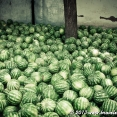 Blog_2013-06-22_Tajikistan_144419