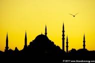 Turkey (2011)
