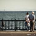 Fishermen in Tekirdağ