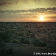 Sunset from my camp site in the desert