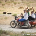 A family on a bike !